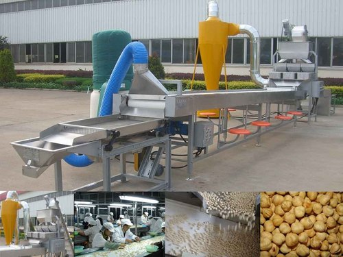 Blanched Roasted Peanut Processing Line