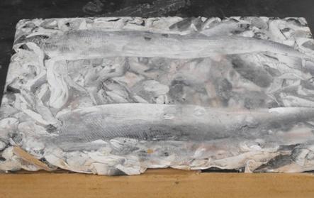 Frozen Fish Skin