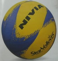 Leather Pasted Volleyball (15P)