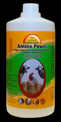 Poultry Chicks Feed Supplements