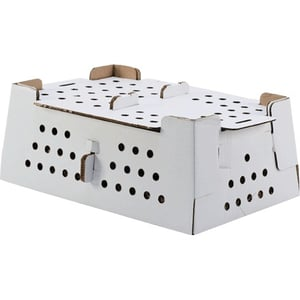 Chick Packaging Boxes