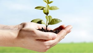 ISO 14001:2004 Environmental Management Systems (EMS) Consultant Service