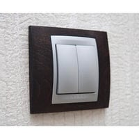 Decorative Electrical Switch