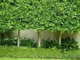 On Time Garden Landscaping Services