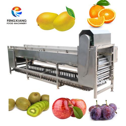 Og-606 Vegetable Fruit Grading Machine
