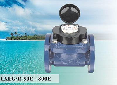 Woltman Detachable Water Meter