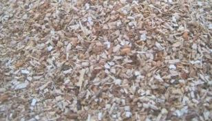 Wood Sawdust For Mushroom Cultivation