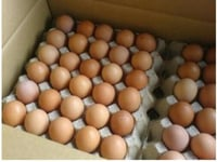Pure Country Chicken Eggs