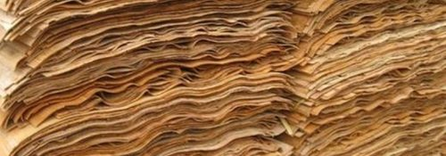 Acacia Core Veneers