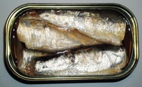 Canned Natural Flavor Sardine