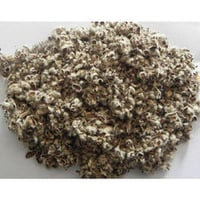 Cotton Seed Hull
