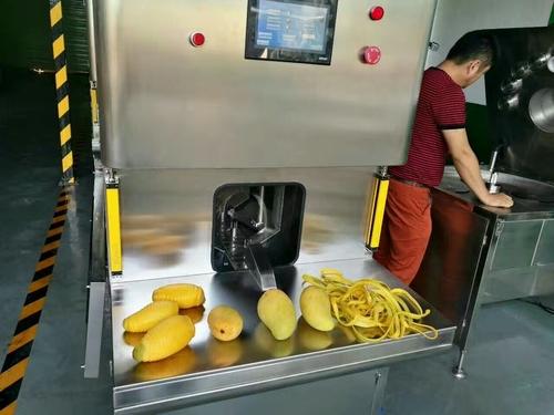 Fruit Peeling Machine