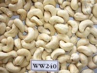 Raw and Processed Cashew Nuts