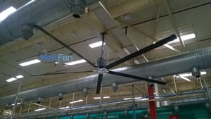 Large Fan For Industry And Commercial Spaces