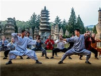 Different Martial Arts Styles Teaching Service