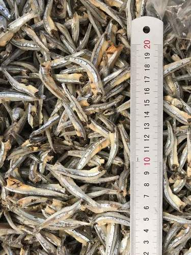 Dried Anchovy Headon Fillet