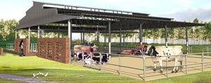 Dairy Designing And Construction Services