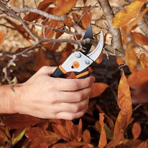 Easy Use Pruning Shears