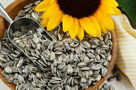 Impurity Free Sunflower Seeds