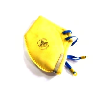 Safety Works Disposable Dust Mask