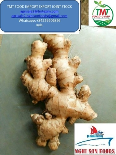 Farm Fresh Young Ginger