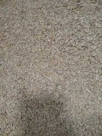 Export Quality Rice Husk