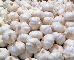 High Grade Fresh Garlic