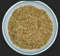 Best Quality Rice Husk