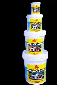 Exfra Exetior House Wall Paint