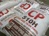 Cpf Poultry Feed Starter