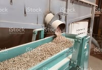 Biomass Pellets For Industrial Use