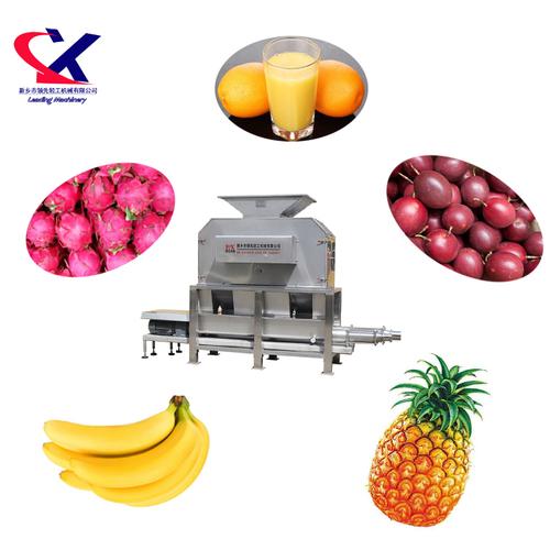 Commercial Automatic Citrus Processing Machine
