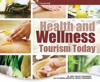 Medical and Wellness Tourism Services