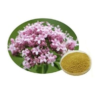 Valerian Officinalis Extract