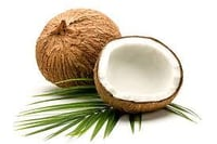 Fresh And High Quality Coconuts