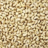 Nutritious And Tasty Cashew Nuts