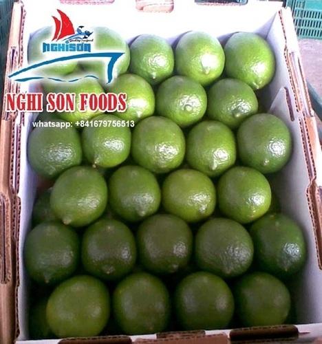 Grade A Green Seedless Lime