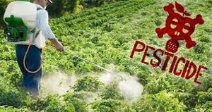 Natural Pesticides For Agriculture Fields