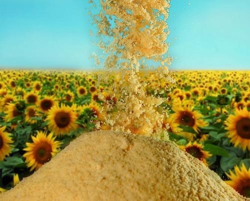 100% Pure Sunflower Lecithin/ Soy Lecithin Powder