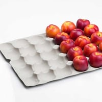 Pulp Moulded Apple Tray