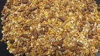 High Grade Cattle Feed