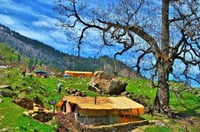 Kasol And Kheerganga Tour Service