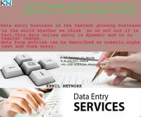 Data Entry Work From Home Service