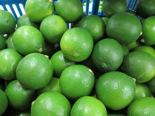 High Quality Fresh Seedless Lime
