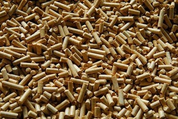 Bio Mass Wood Pellets