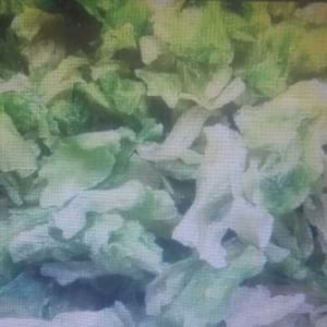 Air Dehydrated Cabbage Flakes