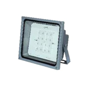 Flood Light With Cree Led And Lens