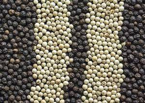 Black And White Pepper Extract 95% 98% Nature Piperine