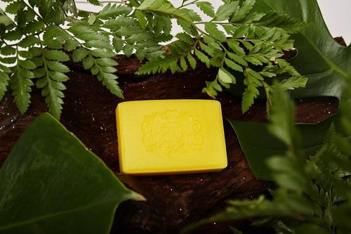 Turmeric Gluta Plus Body And Facial Soap
