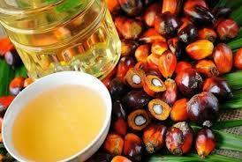 Natural Crude Palm Oil